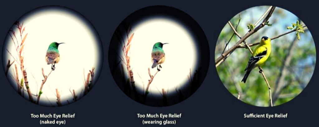 eye relief image
