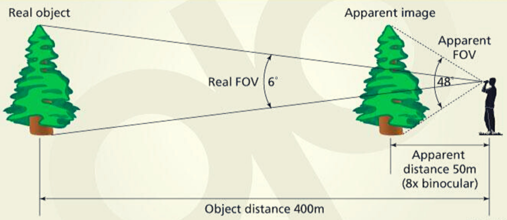 field of view image