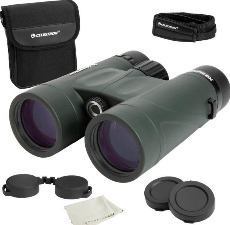 Best Binoculars under $100 for bird watching