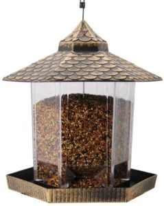 Bird feeder reviews