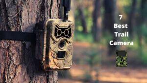 7 Best Trail Camera
