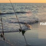 7 Best Surf Fishing Rods