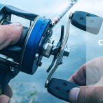 7 Best Catfish reels